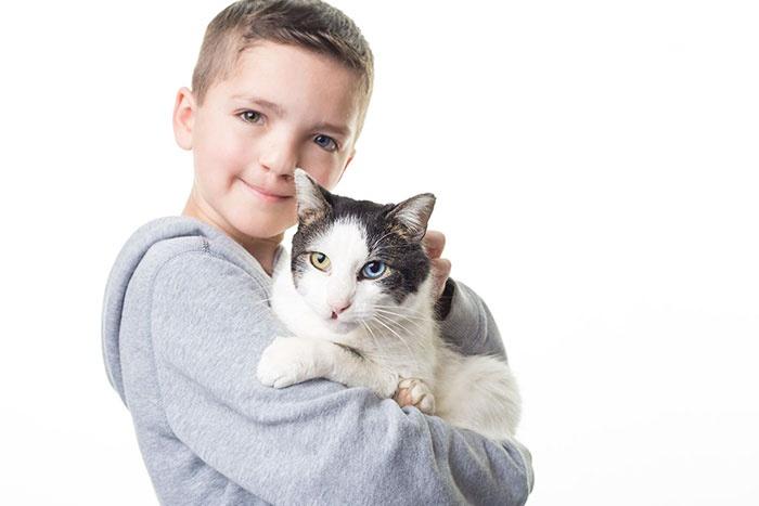 被同学欺凌的7岁异瞳男孩,与一只异瞳猫咪的故事