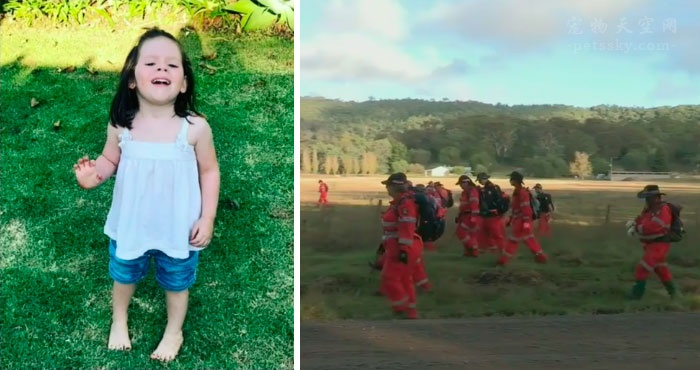 3岁小女孩在森林里走失15个小时,17岁又聋又瞎的狗狗不离不弃