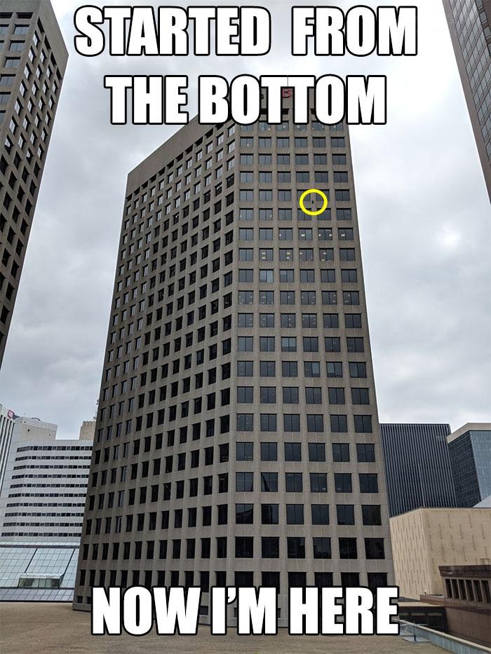 一只小浣熊在网上火了,众目睽睽下,它徒手爬上20多层高的大楼