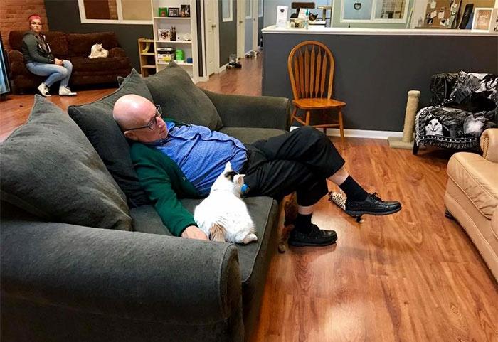 大爷每天在救助站陪猫咪睡觉,没想到能意外引发网友的捐款