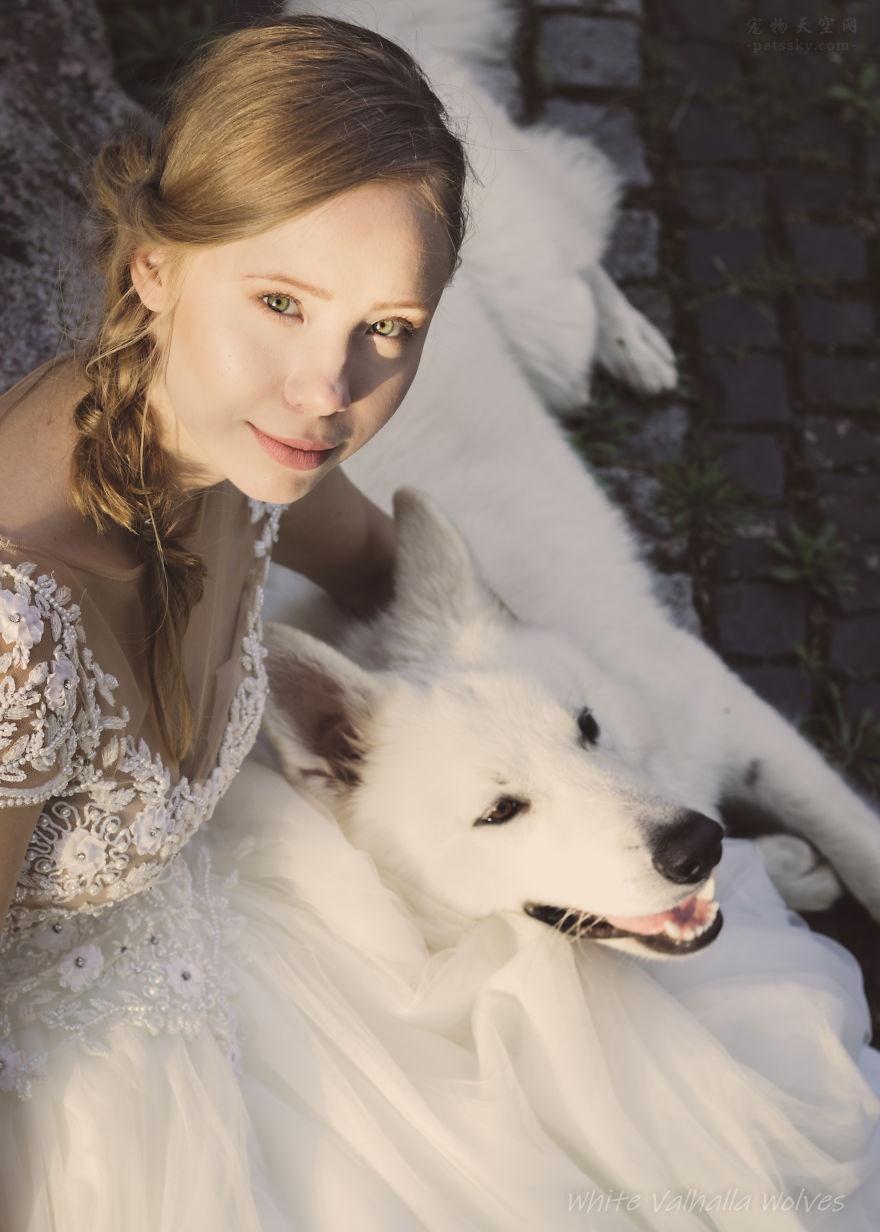 让狗狗参与自己的婚礼?波兰一对夫妻分享他们的心声