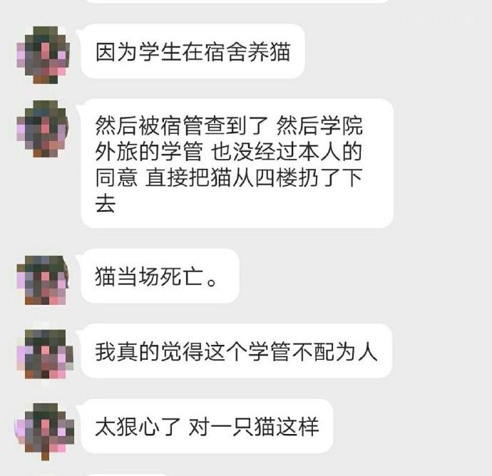 """郑州高校学生干部检查学生寝室,将猫咪从4楼""""扔下""""致死亡"""