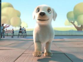 国外爆红的短片:导盲犬《Pip》