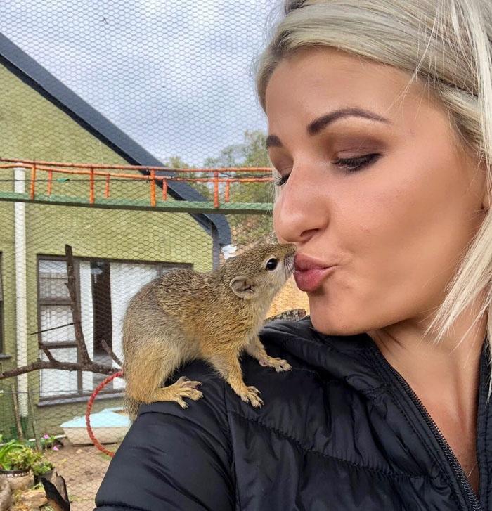 网友救一只野生的松鼠宝宝,它习惯与人类共同生活,不肯离开