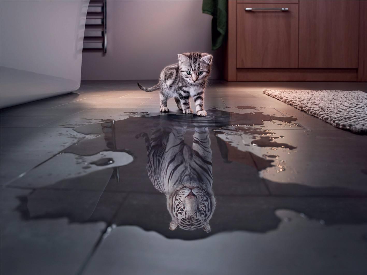 送图:别人怎么看你,不重要;你怎么看自己,很重要