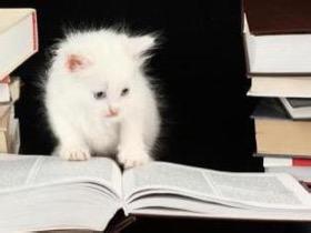 """读懂曾国藩的人生""""六戒"""",就学到了他的做人做事之道"""